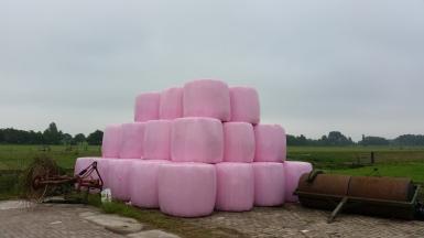 Roz balen kuil